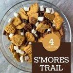 This is a pin for a S'mores Trail Mix recipe. There is a small container of trail mix with the title of the recipe in the bottom right-hand corner of the image.